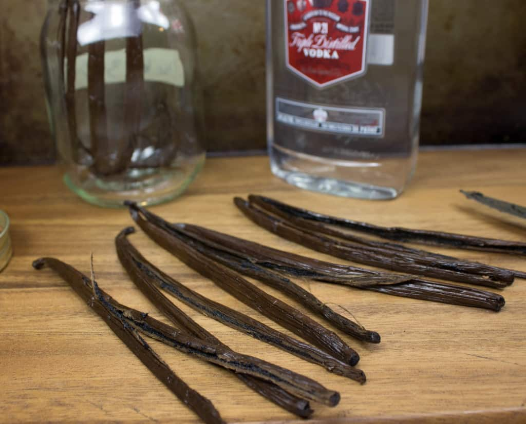 Vanilla Beans for Vanilla Extract