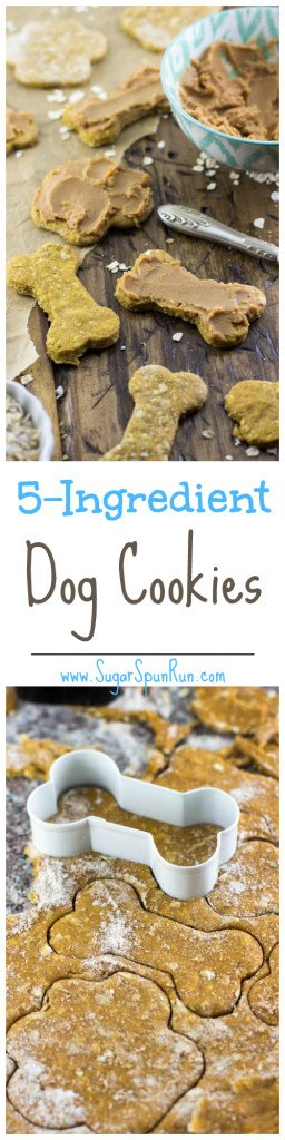 Easy Homemade Dog Cookies--Only 5 ingredients! SugarSpunRun.com