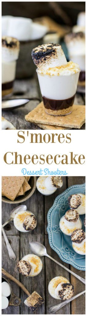 S'mores Cheesecake Dessert Shooters