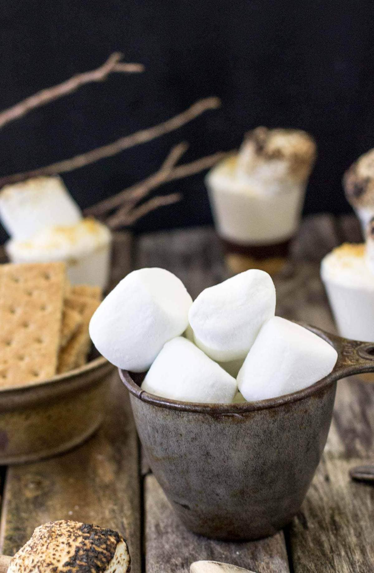 smores dessert shooters (1 of 1)-3