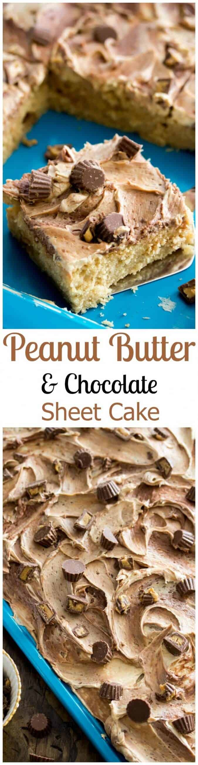 Peanut Butter and Chocolate Sheet Cake