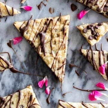 Overhead of chocolate chip cookie brittle