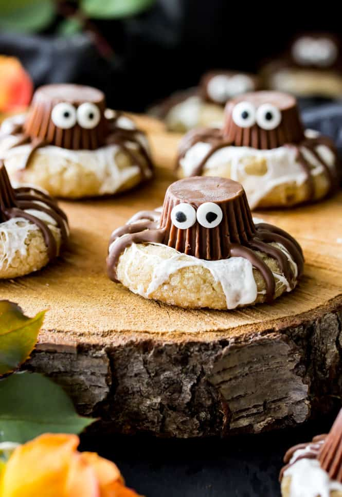 Halloween spider cookies on tree stump