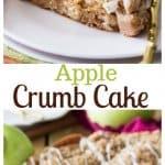 Apple Crumb Cake