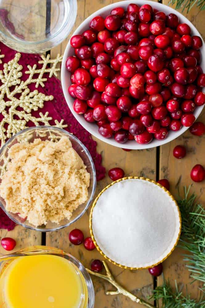 4 Simple Ingredients for fresh cranberry sauce || SugarSpunRun.com