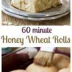 Sixty Minute Honey Wheat Rolls