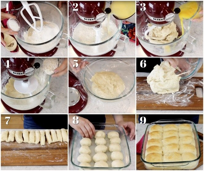 Step-by-step how to make dinner rolls
