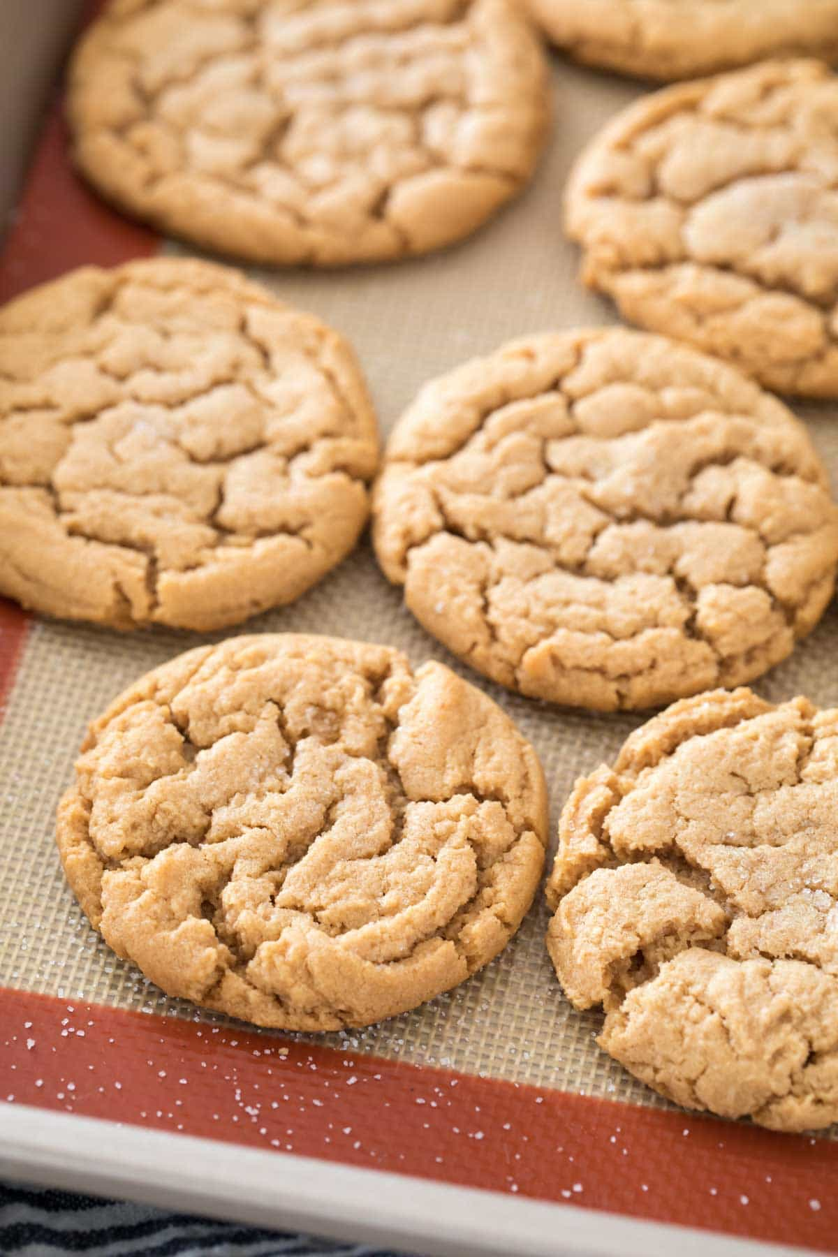 flourless peanut butter cookies on a silpat lined baking sheet