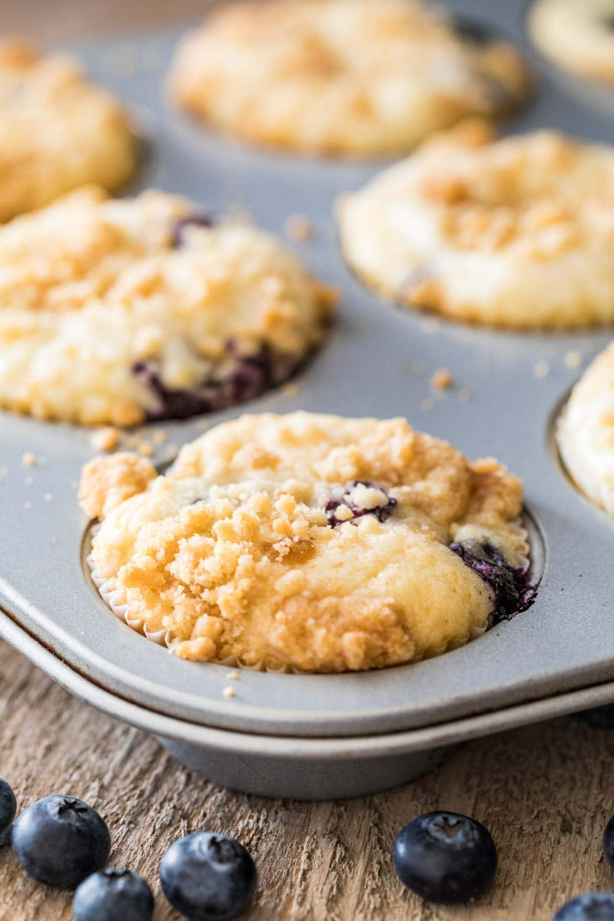 Baked blueberry cream cheese muffins in a muffin tin.