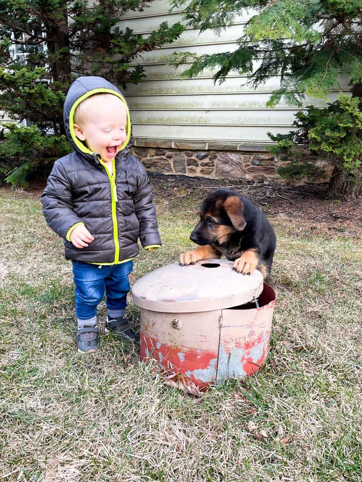 toddler boy and german shepherd puppy standing near well