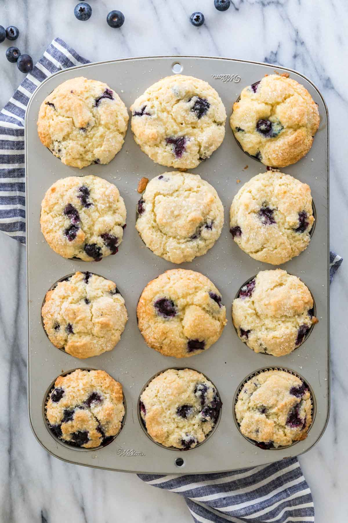 overhead of 12 blueberry muffins in muffin tin