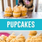 collage of pupcakes, top image is of german shepard puppy behind tray of cupcakes at table, bottom image is a close up image of pupcakes on cooling rack